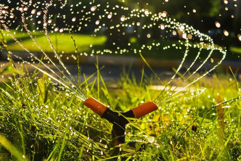 ¿Debería instalar riego por aspersión en mi jardín?